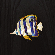 Butterfly fish inlay decal - JIS-55