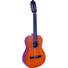 Special Valencia guitar and bag package - VCPKG